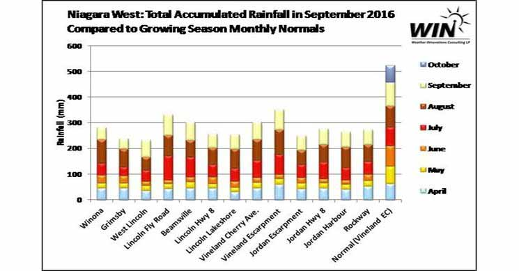 Niagara Accumulation Rainfall