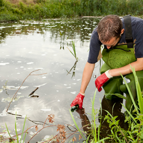Field technician taking water sample from pond