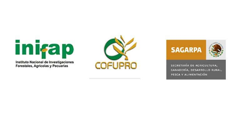organizations for agriculture and forestry in Mexico, SAGARPA, INIFAP, and COFUPRO
