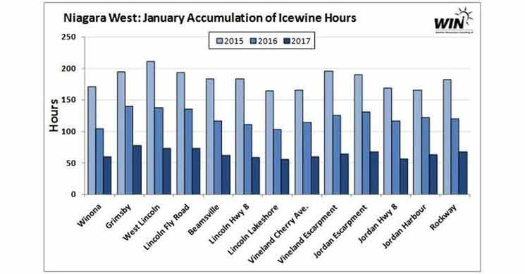 January accumulation of Ice Wine Hours