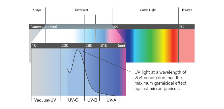 Chart showing wavelengths of light from X-rays to ultraviolet to visible to infrared